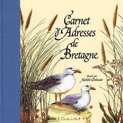 Carnet D Adresses De Bretagne Grand Format 9782841351800 Editions Equinoxe