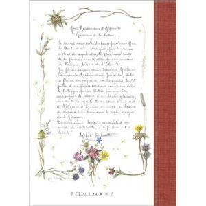 editions-equinoxe-647-les-carnets-dequinoxe-carnet-de-courses-et-de-randonnees-de-nos-montagnes-1