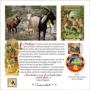 editions-equinoxe-698-carres-animaux-bique-biquets-et-dame-chevre-1